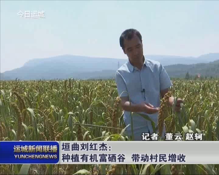 垣曲刘红杰:种植有机富硒谷 带动村民增收