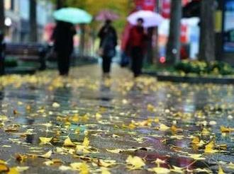 """11月10日起 山西大风降温降水一起""""上阵"""""""