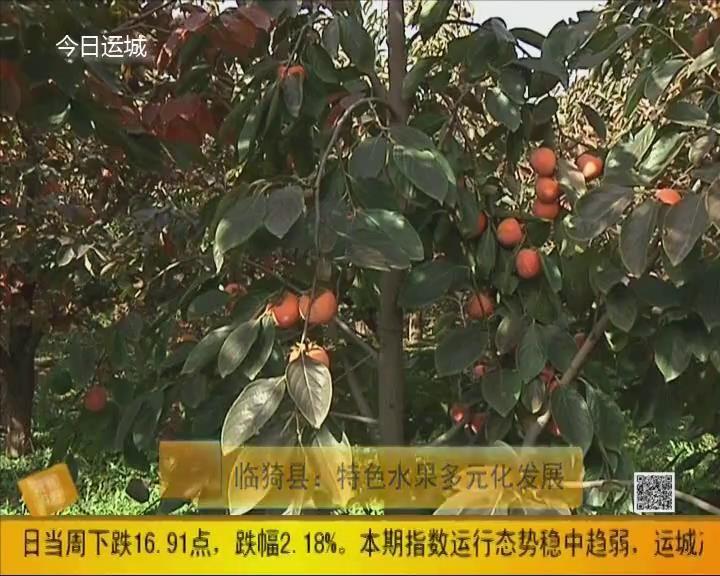 临猗县:特色水果多元化发展