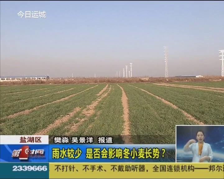 雨水較少 是否會影響冬小麥長勢?