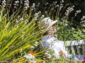 英国北威尔士民众繁花丛中享受春日暖阳