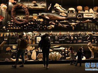 國際博物館日:世界名館及特色主題館一覽