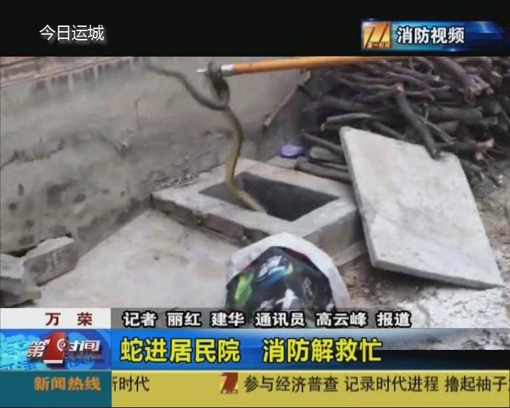 萬榮:蛇進居民院  消防人員出手相救