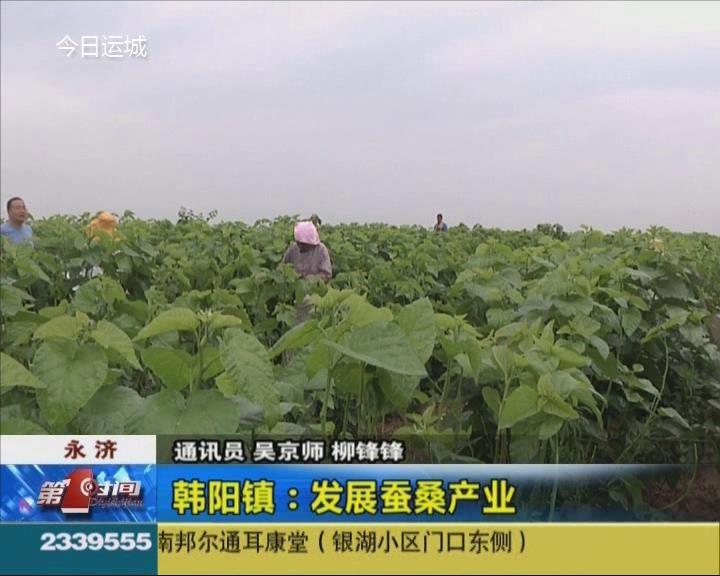 永濟韓陽鎮:發展蠶桑產業
