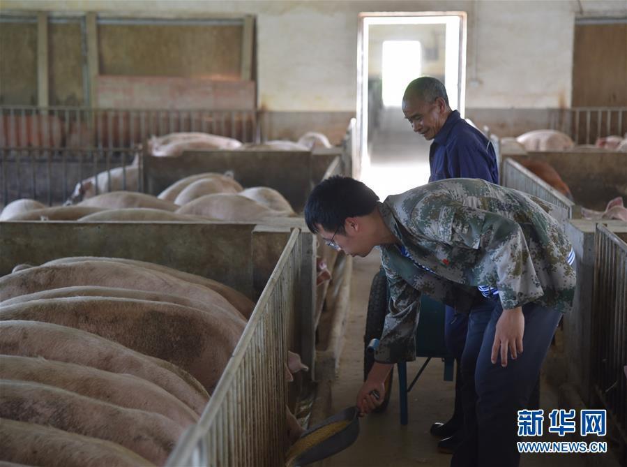 (新华全媒头条·图文互动)(2)咱们村里的年轻人——记奋战在贵州脱贫攻坚一线的青年