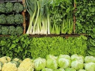 降雨对蔬菜价格影响不大-新华网