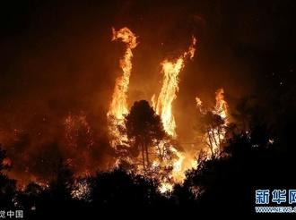 希腊埃维亚岛发生特大森林火灾 烧焦味弥漫到雅典