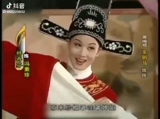 黄梅戏女驸马选段