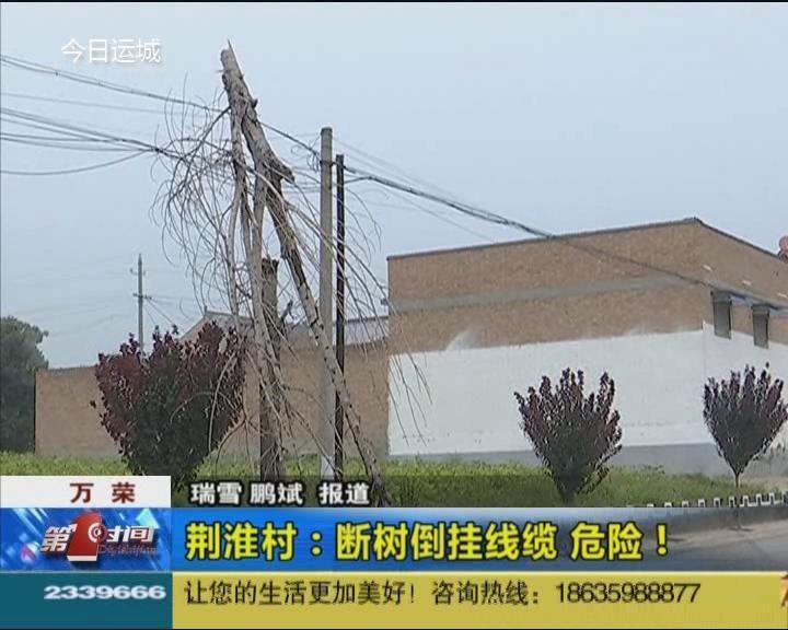 涉及民生的事不是小事!万荣县荆淮村断树倒挂线缆很危险