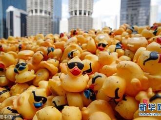 """芝加哥举办年度""""小黄鸭""""慈善竞赛 塑料小黄鸭扎堆下水""""游""""向终点"""