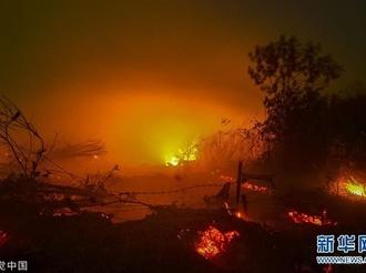 印尼森林火灾持续 总统佐科前往视察