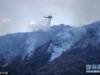 美国加州突发森林火灾 出动消防飞机灭火