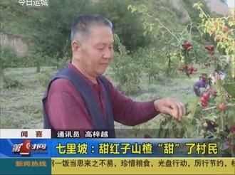 """闻喜七里坡:甜红子山楂""""甜""""了村民"""