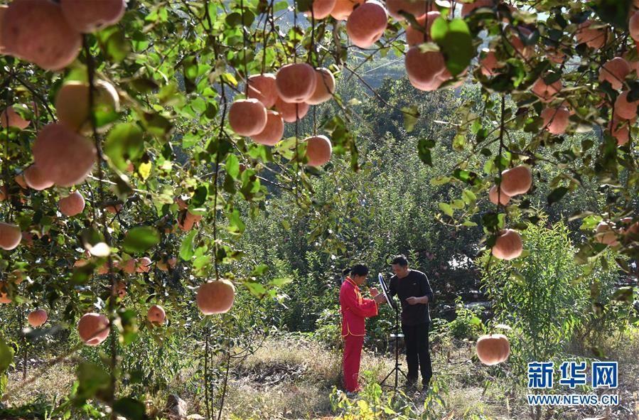 用舞蹈為家鄉蘋果代言