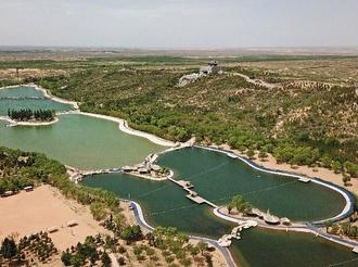 大河奔流擘畫綠色發展新畫卷——黃河流域生態保護與高質量發展調研記