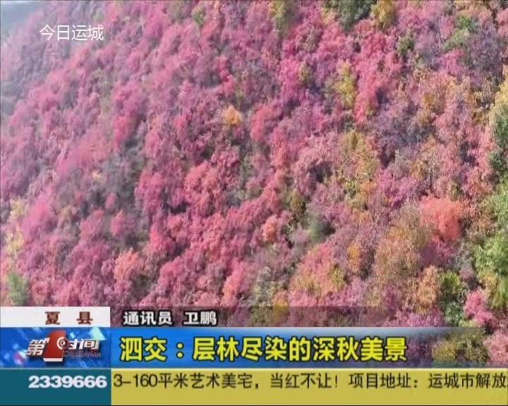 夏縣泗交:層林盡染的深秋美景