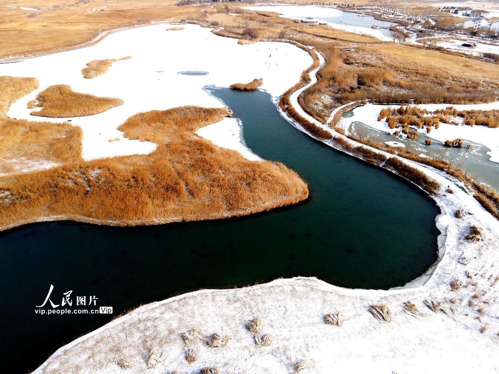 甘肅張掖:雪落濕地景色美