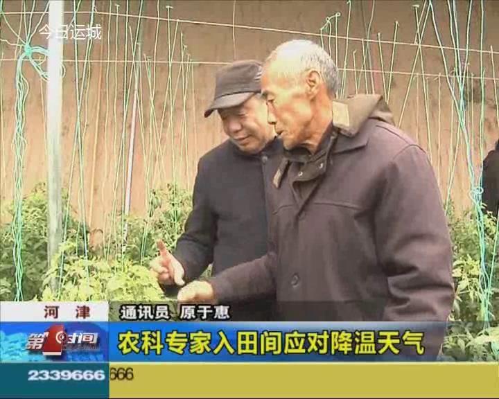 農科專家入田間應對降溫天氣