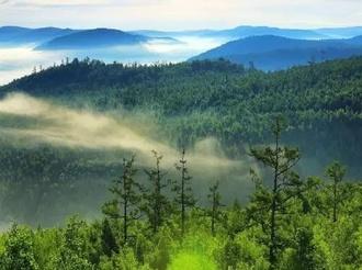 采取哪些措施防范森林草原火灾?权威回应来了