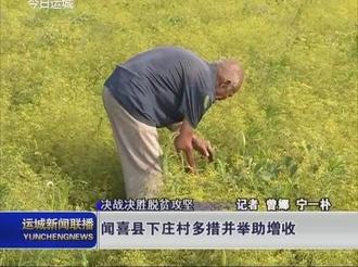 闻喜县下庄村多措并举助增收