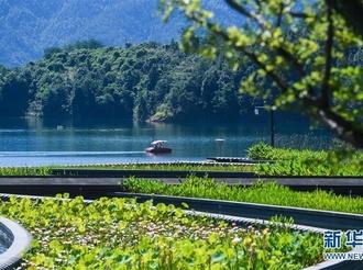 生态文明之光照耀美丽中国 ——写在绿水青山就是金山银山理念提出十五周年之际