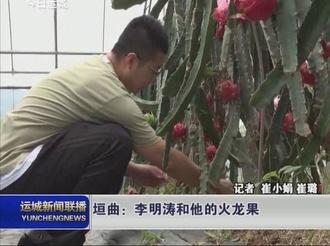 垣曲:李明涛和他的火龙果