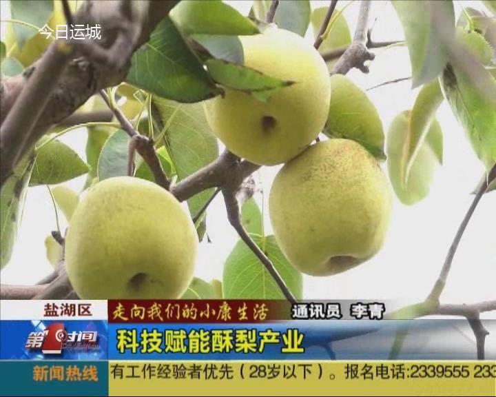 【走向我们的小康生活】科技赋能酥梨产业