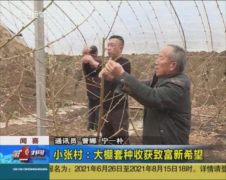 闻喜小张村:大棚套种收获致富新希望