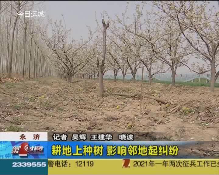 耕地上種樹 影響鄰地起糾紛