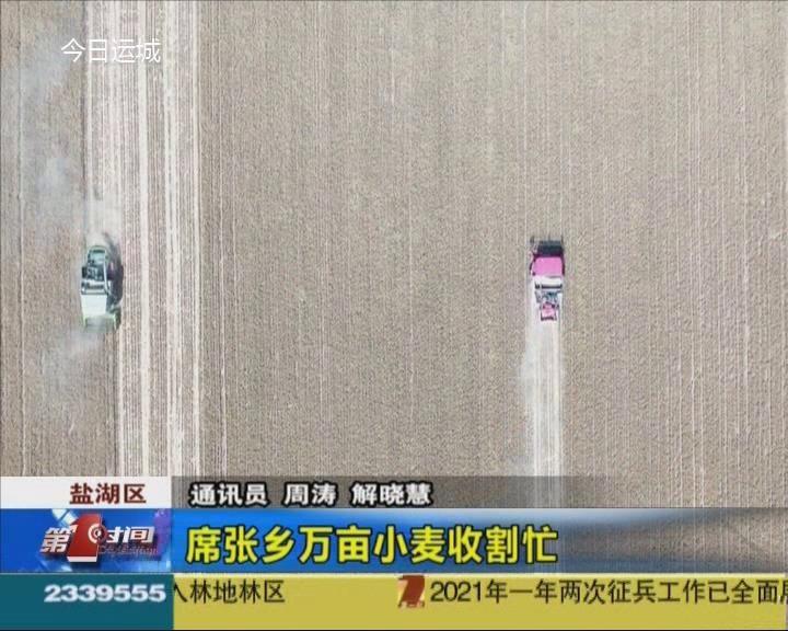 鹽湖區席張鄉萬畝小麥收割忙