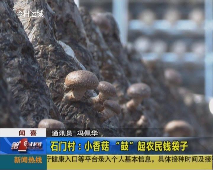 聞喜縣石門村:小香菇'鼓'起農民錢袋子